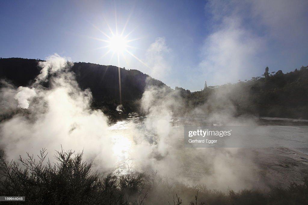 Thermal steam rising, Orakei Korako : Foto de stock