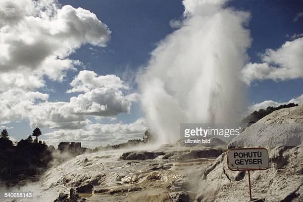Thermalgebiet Whakarewarewa bei Rotorua auf der neuseeländischen Nordinsel Geysir Pohutu Aufgenommen 1997