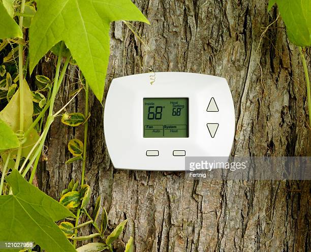 Thermostat on a tree trunk