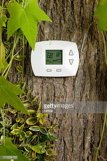 Thermostat on tree, cooling temperature in Fahrenheit