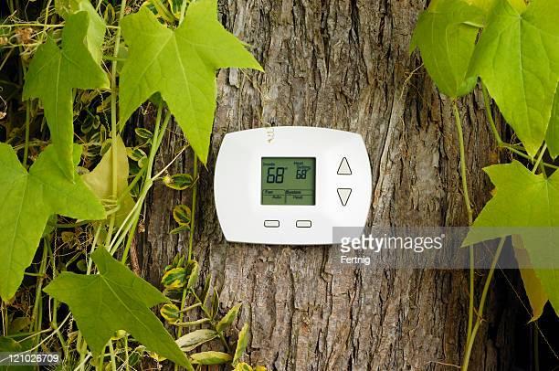 Thermostat on tree, heating temperature in Fahrenheit