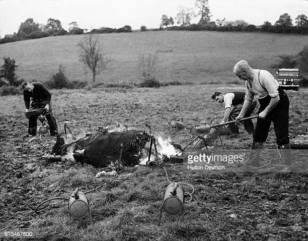 These 3 policemen are burning the carcass of a cow that died of anthrax at Woolstone Hill Gloucestershire UK PCs A Gait F Jones and T Breen are using...