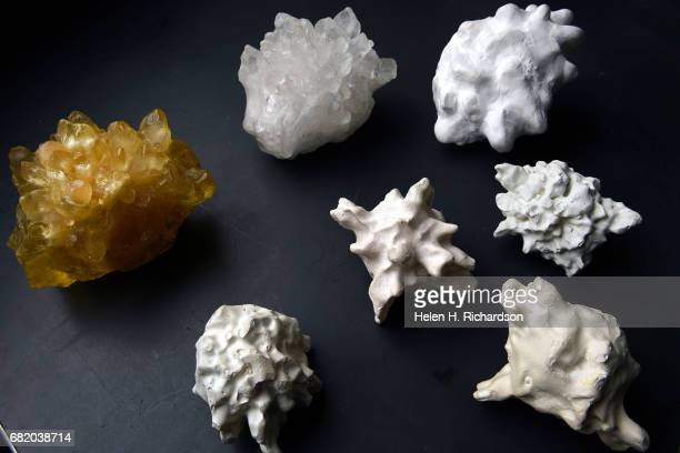 These are plastic castings of hailstones made by Dr Charles Knight Senior Scientist Emeritus at NCAR in his lab on May 11 2017 in Boulder Colorado A...