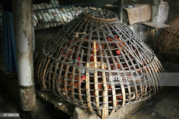 CONTENT] These are the expensive organic onesanother cage another way of keeping the chicken in check I am not a vegetarian so I must say these are...