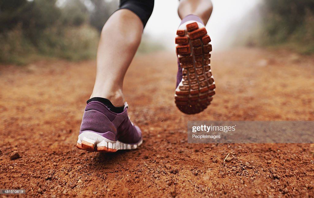 These calves were made for running : Stock Photo