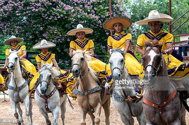 These female Mexican-Americans are riding in synchronized formation at a charreada tournament being held at a ranch in South Texas.