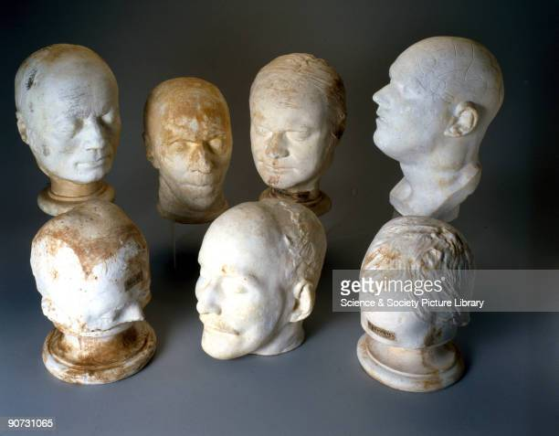 These heads by various makers were used to illustrate the theories of phrenology and belong to the Wadebridge Town Institution in Cornwall Franz...