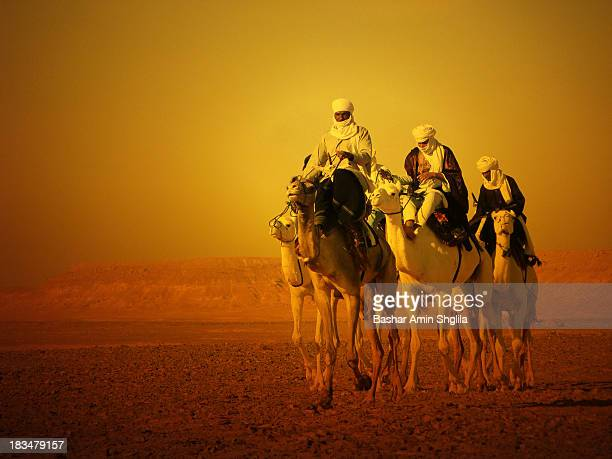 These Knights came from Ouargla in Algeria to participate in Teniri camel racing competition at Ghadamis city in Libya,they won the first prize !