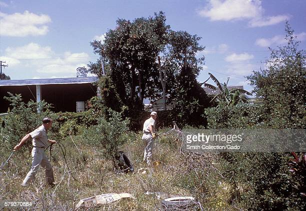 These men are spraying mosquito for larvae during the 1965 Aedes aegypti eradication program in Miami Florida 1965 In the 1960s a major effort was...
