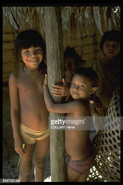 These Yanomami children from Maturaca are of the generation that will live in permanent contact with the world of the white men and that will have to...