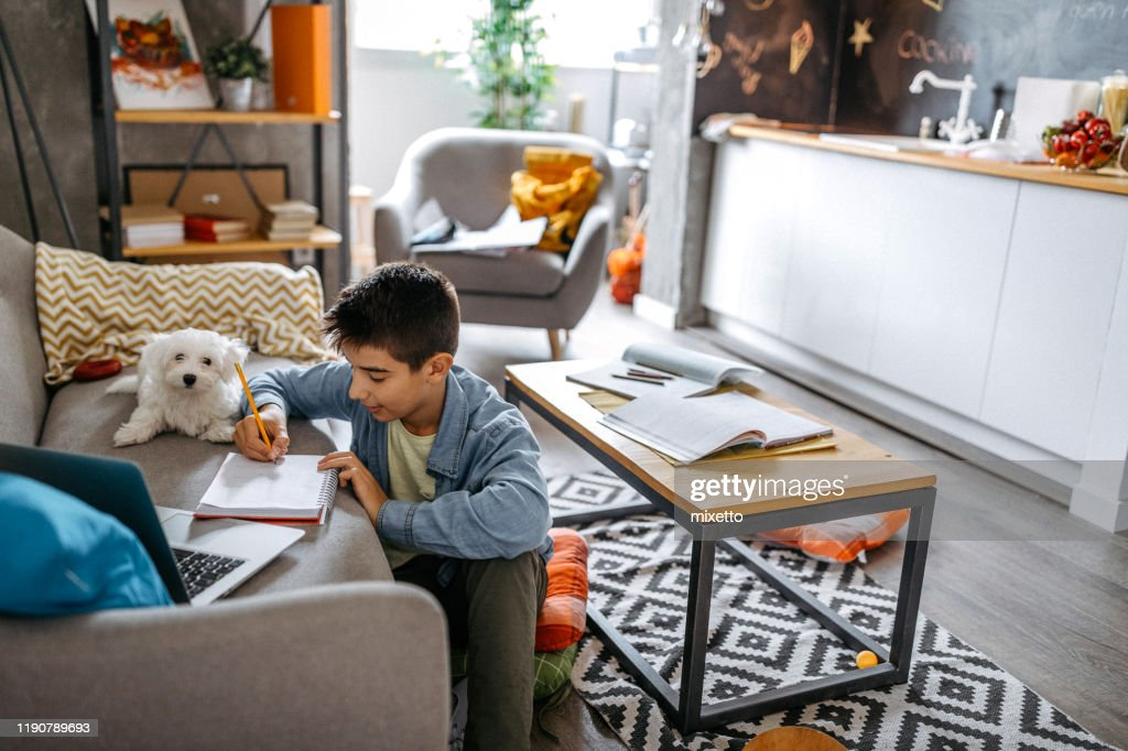 They always enjoy doing their homework together : Stock Photo
