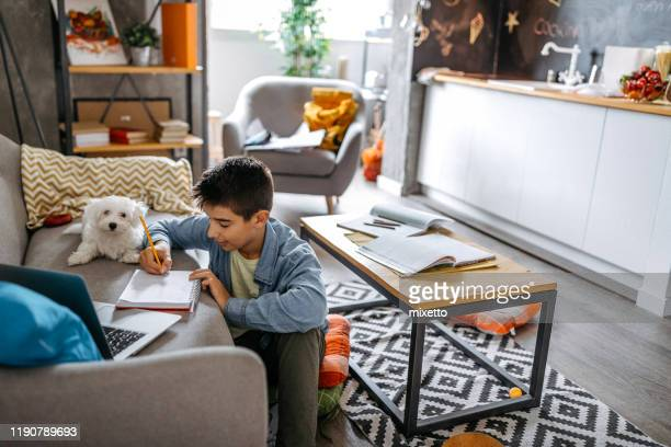they always enjoy doing their homework together - dog pad foto e immagini stock