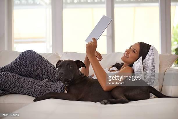 Ils ont également des applications pour les animaux de compagnie de nos jours ?