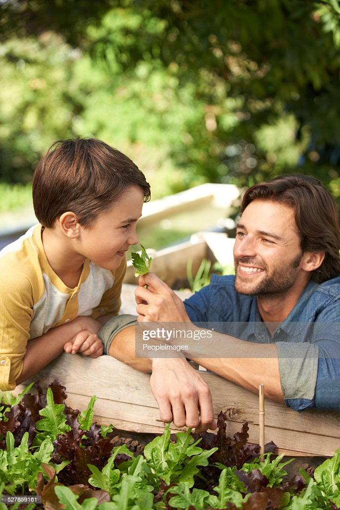 Sie lieben gardening together : Stock-Foto