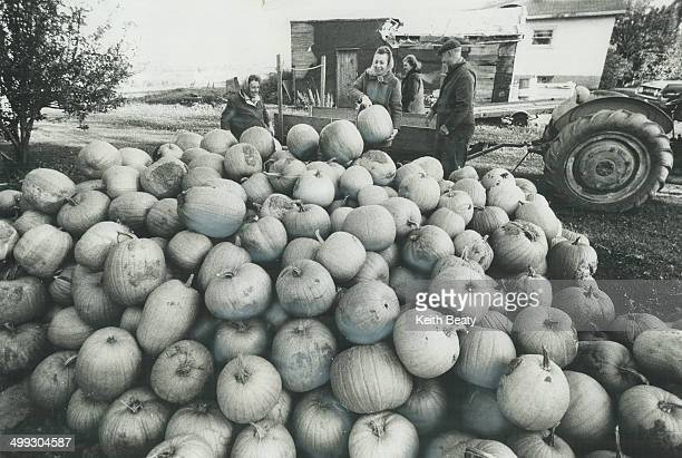 They'll make a lot of JackO'Lanterns With frost expected Mary Schembri had to take in the pumpkins she raises on her 4 1/2 acres on Birchmount Rd...