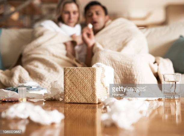 they're all blocked up - flu virus stock pictures, royalty-free photos & images