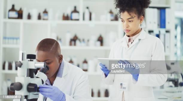 they're determined to find the answer - bioquímico imagens e fotografias de stock