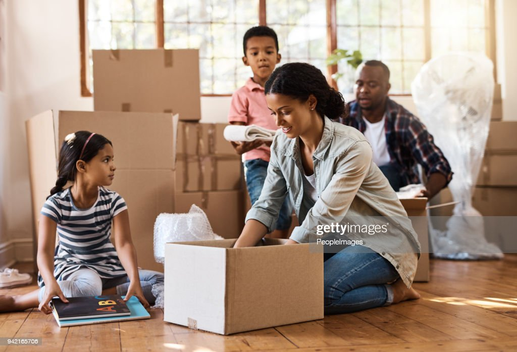 They've found a new place to call home : Stock Photo