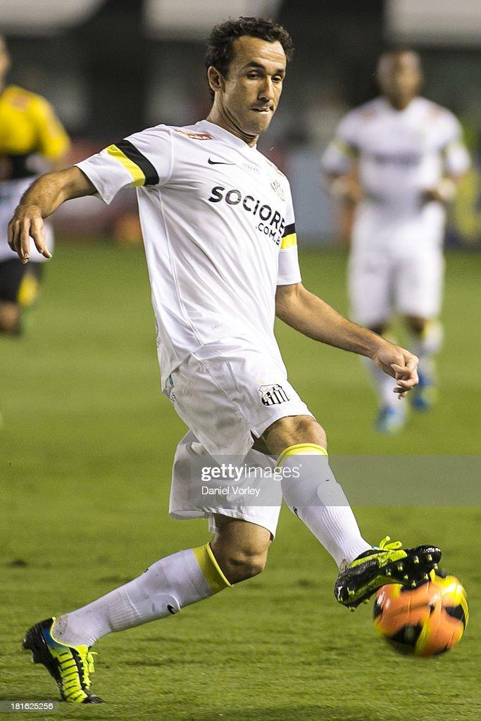 Santos v Criciuma - Brazilian Series A 2013