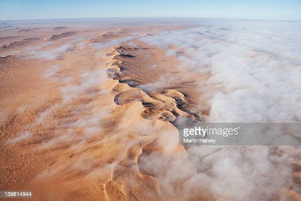 Thick fog from the Atlantic Ocean moves far inland and often blankets the dunes to create enough moisture for many species to survive. Namib desert, Namib-Naukluft National Park, Namibia, Africa