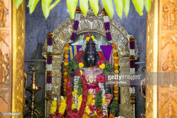 thimmamma marrimanu, andhra pradesh, india - hindu god stock pictures, royalty-free photos & images