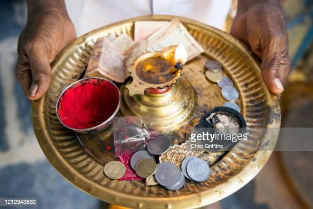 thimmamma marrimanu, andhra pradesh, india - bindi stock pictures, royalty-free photos & images