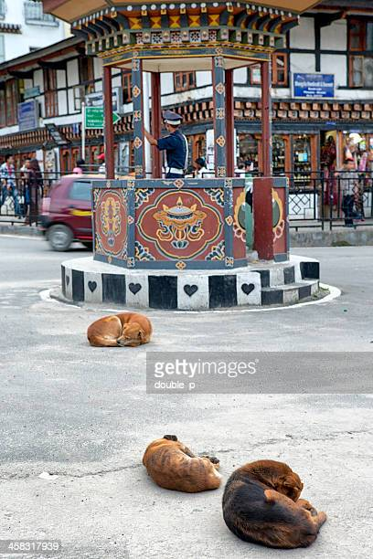 thimpu roundabout - thimphu stock pictures, royalty-free photos & images