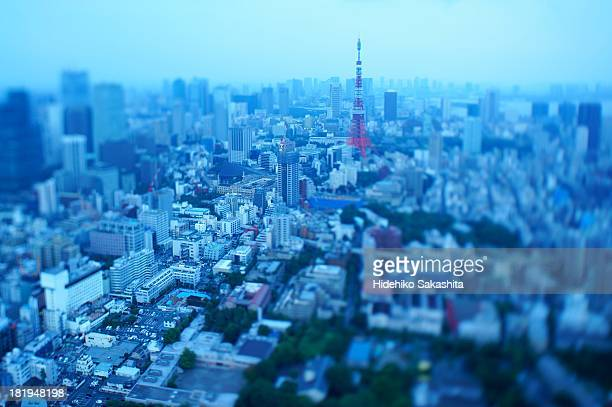 A Thin Line leading to Tokyo Tower