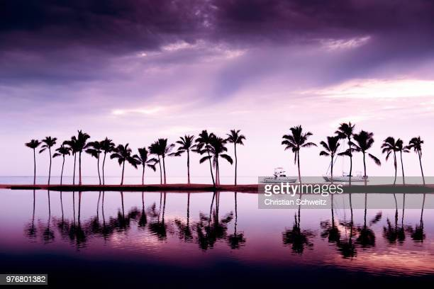thin reflections - images stock pictures, royalty-free photos & images