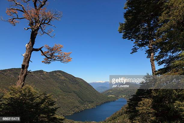 things you are thankful for - villarrica stock photos and pictures