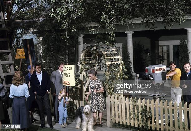 PROFESSOR I Think I Will Never See A Tree Airdate March 25 1970 JULIET MILLSRICHARD LONGKIM RICHARDS ELLEN CORBYWALDO THE DOGDICK WHITTINGTON