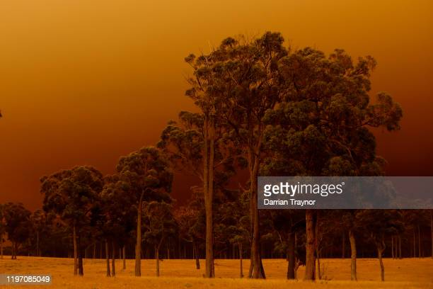 Think smoke from bushfires fills the air in eastern Gippsland on January 02 Australia The HMAS Choules docked outside of Mallacoota this morning to...