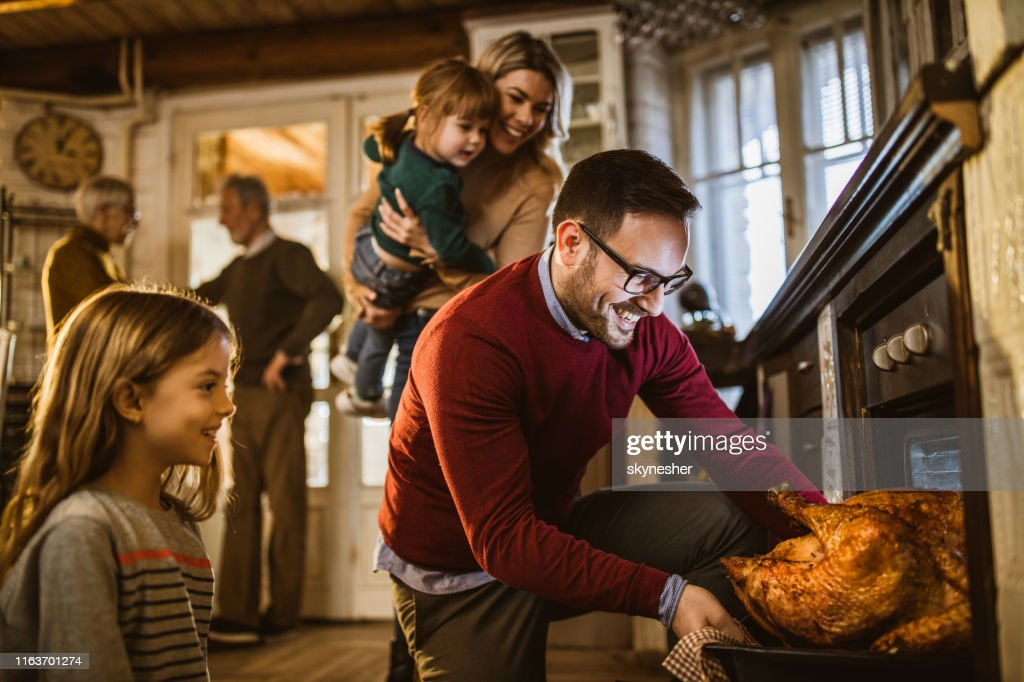 I think this Thanksgiving turkey is baked! : Stock Photo