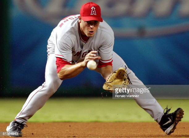 Third baseman Dallas McPherson of the Anaheim Angels fields a ground ball against the Texas Rangers September 27 2004 at Ameriquest Field in...