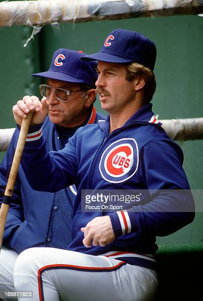 Third Baseman Ron Cey of the Chicago Cubs looks on from the dugout during a Major League Baseball game circa 1984 Cey played for the Cubs from 198386