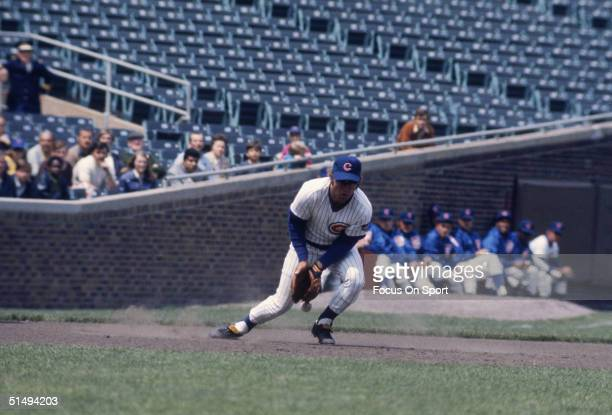Third baseman Ron Santo of the Chicago Cubs lets this hot smash bounce off his glove at Wrigley Field during the 1960s in Chicago Illinois