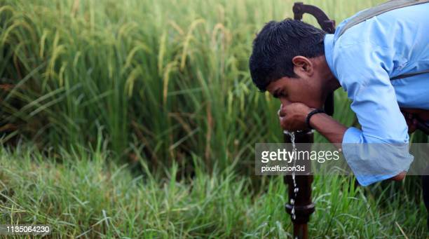 thirsty child drinking water - scarce stock pictures, royalty-free photos & images