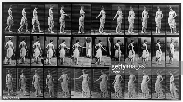 Thirtysix consecutive images of partially nude woman walking and turning Photographed by Eadweard Muybridge in 1887 as a collotype prin