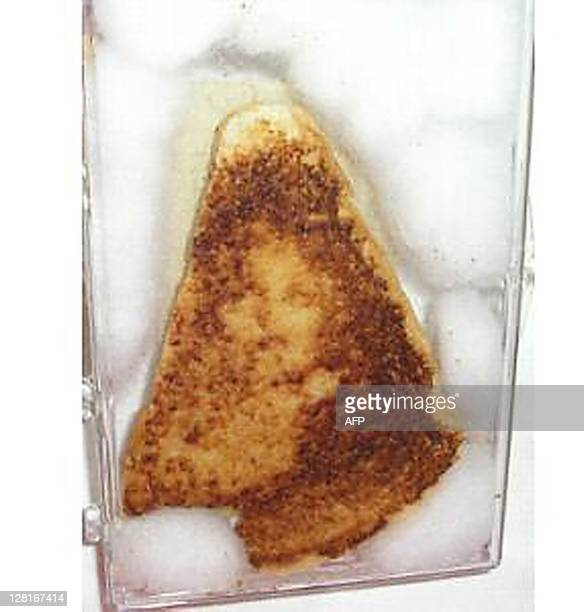 This 16 November 2004 file photo shows a computer frame grab image from the Internet site eBay showing a 10yearold grilled cheese sandwich up for...
