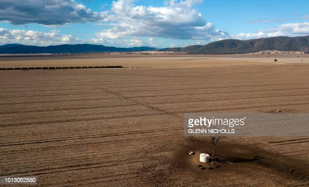 This aerial photo taken on August 7 2018 shows a train making its way through dry paddocks in the droughthit area of Quirindi in New South Wales A...