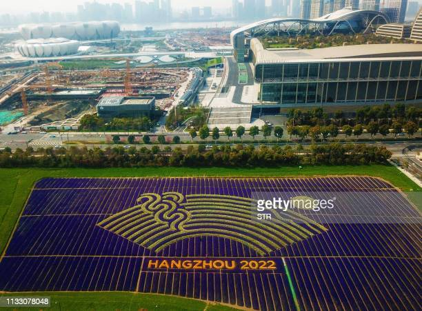 This aerial photo taken on March 26, 2019 shows different coloured flowers used to create the logo of the 19th Asian Games near the...