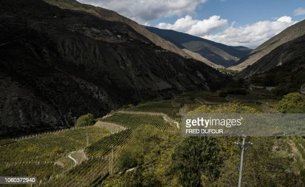 This aerial photo taken on October 10, 2018 shows a view of the Ao Yun vineyards in a valley located beneath the Meili mountain in Adong, in...