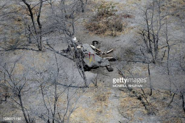 This aerial photograph shows the carcass of an elephant in the plains of the Chobe district in the northern part of Botswana on September 20 2018...