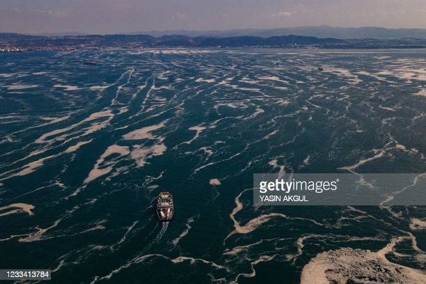 This aerial photograph taken on June 12 in the Darica district of Kocaeli, Turkey, shows boats sailing among the Marmara sea covered with sea snot, a...
