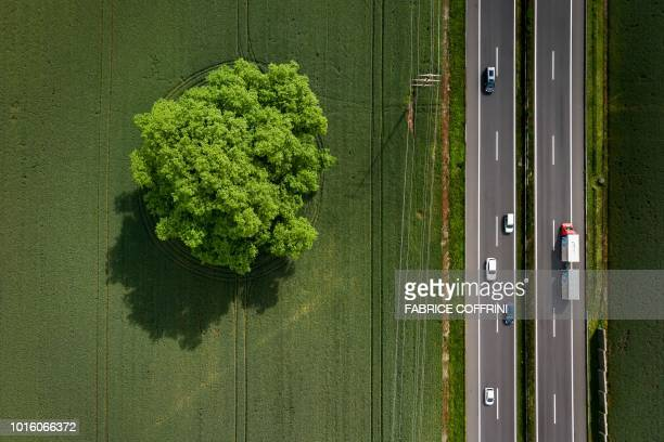 This aerial view shows a tree in a field along the A1 motorway Lausanne Geneva on May 30 2018 near Fechy western Switzerland