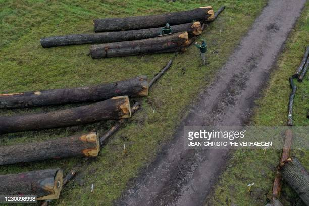 This aerial view shows Laurent Kontor , territorial forestry technician and Jérôme David, assistant to the Territorial Unit Manager and Timber...