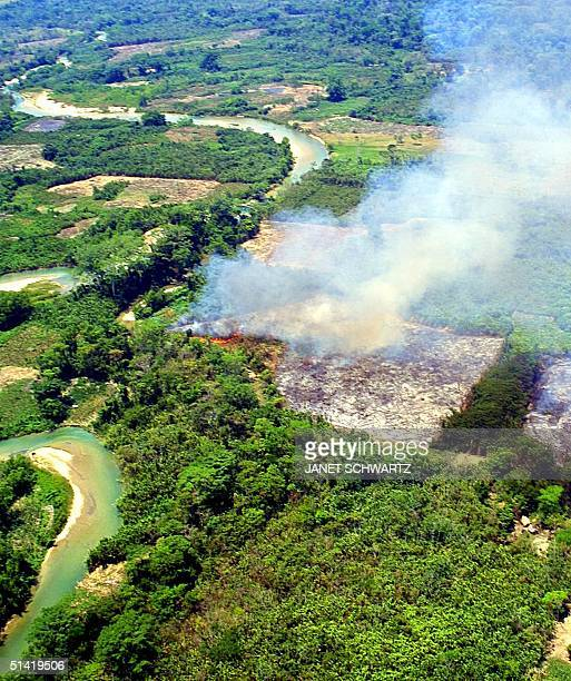 This aerial view shows the Jatate River 27 April 2001 and what is left of the Lacandona jungle near San Quintin Chiapas where Indigenous people...