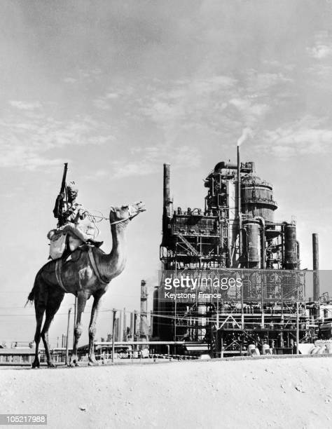 This Armed Soldier Up On His Camel Is Contrasting With The Refinery Of Bahrein Petroleum Company