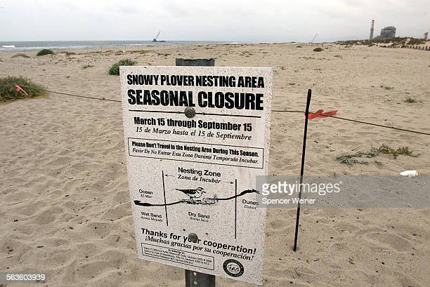 This beach, marked as Snowy Plover seasonal habitat, would be one affected if tons of dirt where stored in piles, part of proposed effort by Ventura...