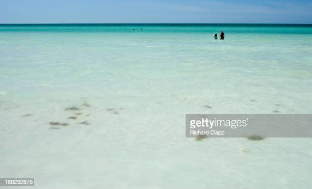 CONTENT] This beach was rated in 2012 as the number one beach in the world Rated by Dr Beach Siesta Key is on the Gulf of Mexico in Sarasota FL...